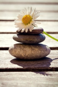 Zen stones with daisy